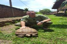 Централноафричка Република (MINUSCA)